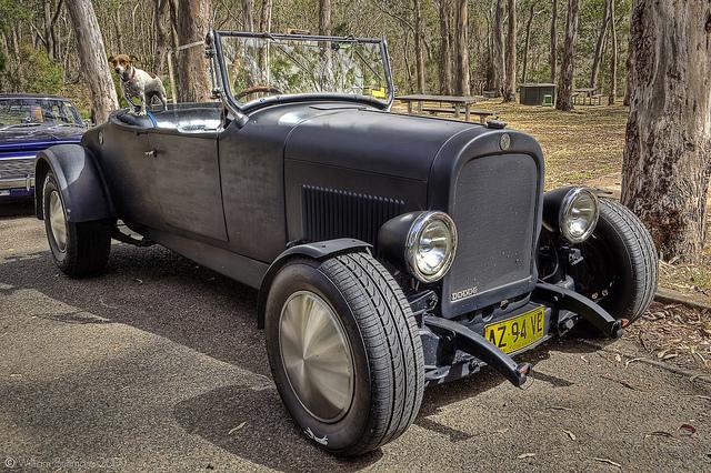 Black Antique Car in Australia