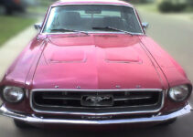 1968 Ford Mustang | Muscle Car