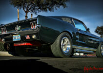 1967 Mustang Fastback Muscle Car