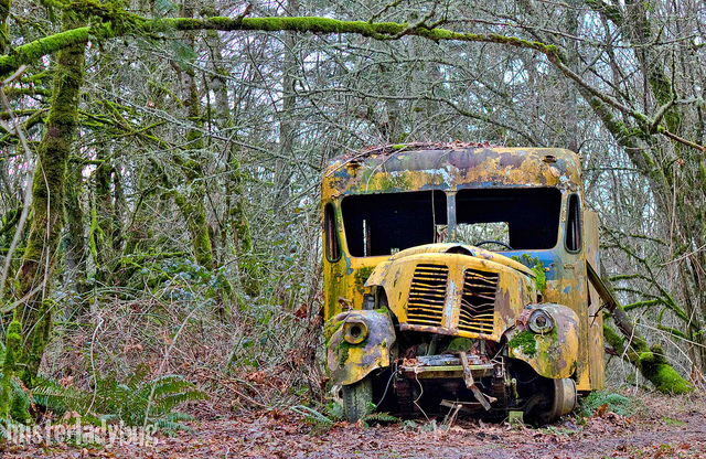 Abandoned School Bus old car