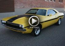 Muscle Cars and Road Courses Make Unlikely Partners – Video