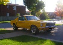 1968 Mustang Fastback | Muscle Car