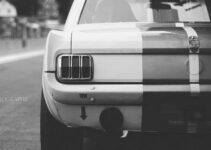 Love Mustang