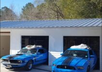 Classic and Recent Blue Mustang
