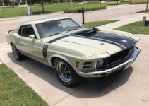 Neat Mustang