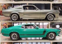 Mustang Colors. Which is your favorite?